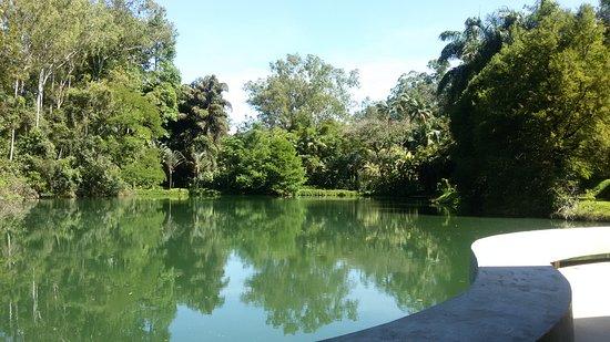 Inhotim: Vista do lago a partir da galeria Tunga