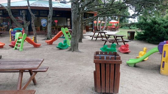 Mundo Marino : Espacio recreacion infantil