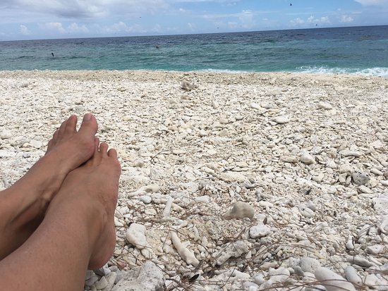 Lady Elliot Island, Australia: photo1.jpg