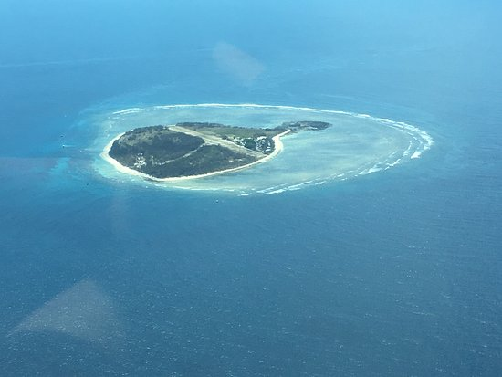 Lady Elliot Island, Australia: photo3.jpg