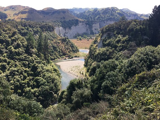 Tarata Fishaway: Room with a view