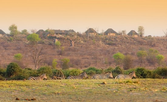 Ngoma Safari Lodge: View of lodge from Chobe floodplain