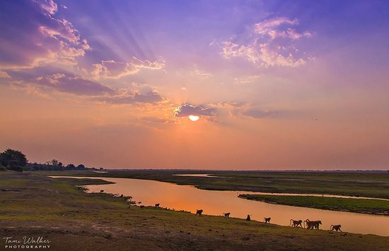 Ngoma Safari Lodge: Sunset in Cobe National Park