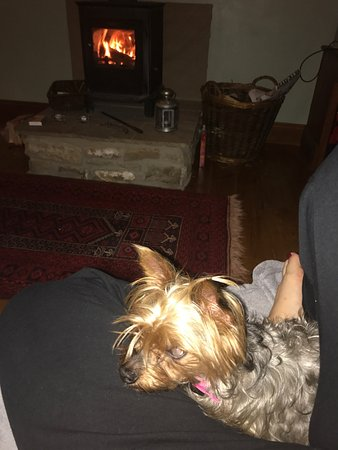 Otterburn, UK: Holly loved the fire