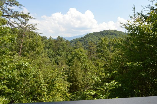 Honeymoon Hills Cabin Rentals: Our view from the deck. Was peaceful, secluded, and quite.