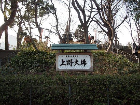 Ueno Great Buddha: 階段を登って行きます