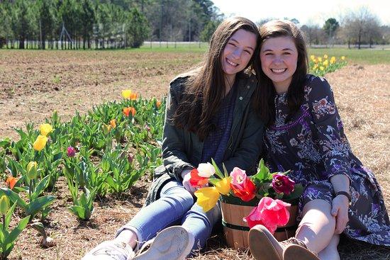 Montevallo, AL: Festival of Tulips