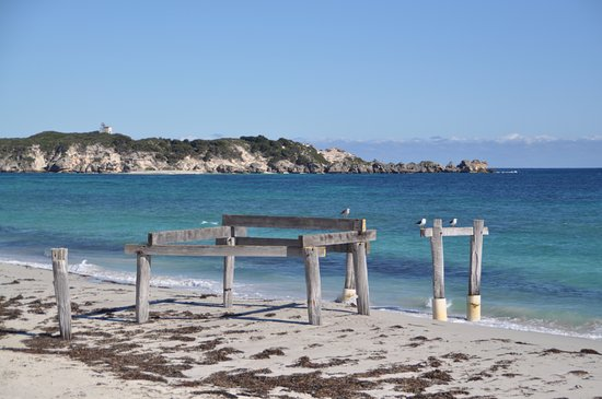 Hamelin Bay Photo