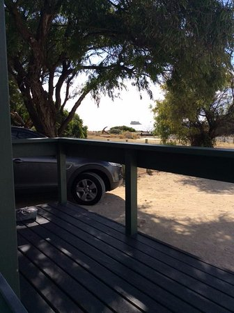 Hamelin Bay, Avustralya: sitting on the deck outside the loungeroom windows. yes it is as close as it looks.