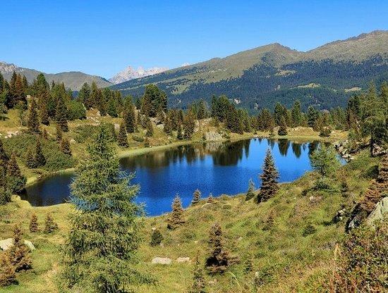 Parco Paneveggio - Pale di San Martino