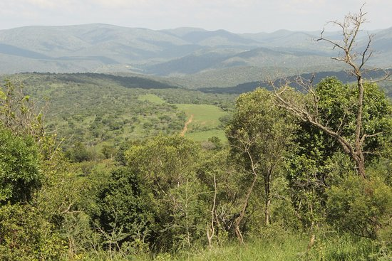 Mkuze, Sudáfrica: Spectacular views. We had lunch in the bush overlooking the airstrip