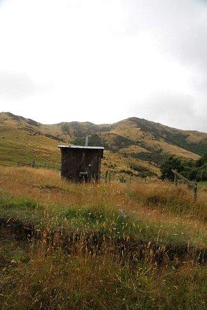 Фейерли, Новая Зеландия: Hot shower !!