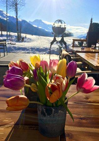 Silvaplana, Swiss: photo0.jpg