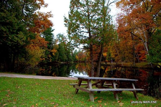 Menominee, MI: Picnic tables available throughout the park.