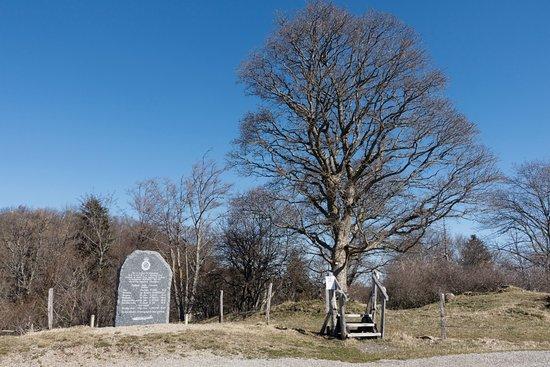Halifax MZ-807 Memorial