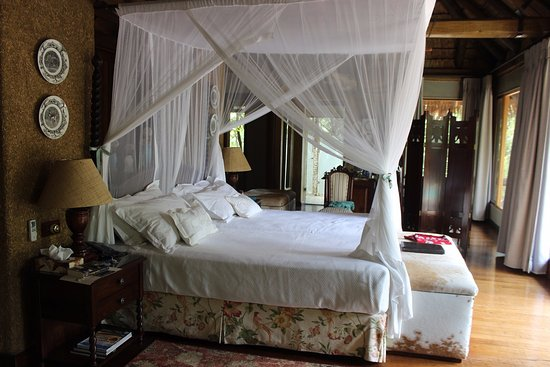 Camp Jabulani: The rooms are just wow!
