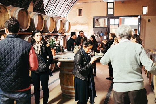 Crillon-le-Brave, Francia: Wine tasting