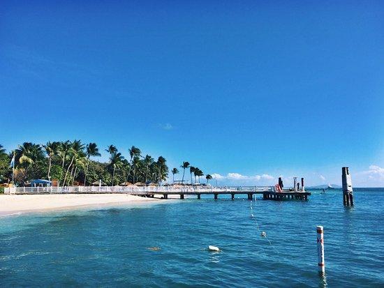 Integrity Charters: Palomino Island