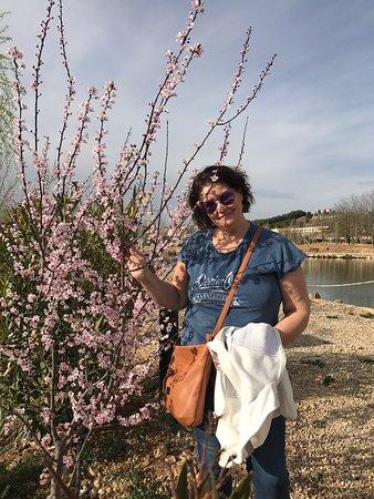 Paracuellos de Jiloca, Hiszpania: Se nota que nos lo pasamos estupendamente. El entorno del exterior es fantástico. Un paseito y u