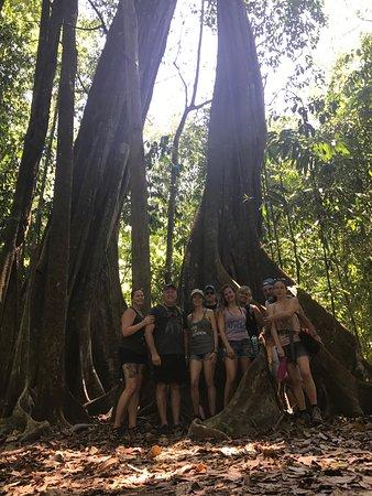 Carate, Costa Rica: photo1.jpg