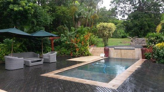 Avalone Guest House: Piscine et parc