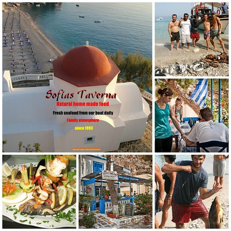 Kira Panagia, Greece: MIX PHOTOS FROM SOFIAS TAVERNA AND FRESH FISH FROM THE BOAT.
