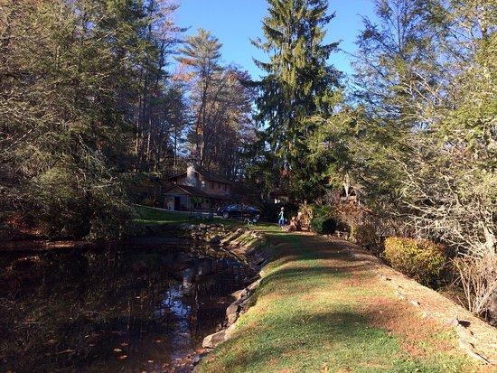 米切爾別墅小屋照片