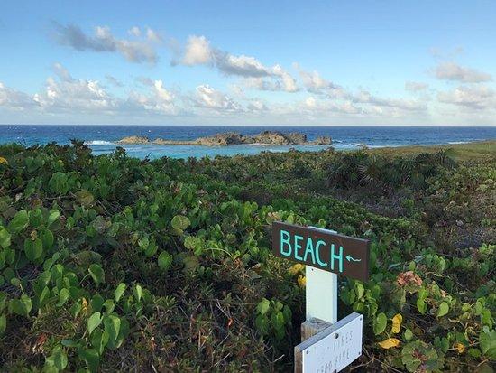 藍色地平線渡假村照片