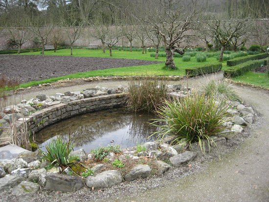 Aberaeron, UK: Pond and fruit trees in the walled garden at Llanerchaeron