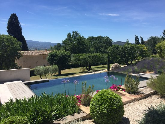 Les Oliviers & Les Cerisiers : Enjoy the infinity pool and views of the Luberon