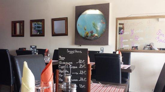 Int rieur l aquarium photo de pizzeria di roma for Aquarium interieur