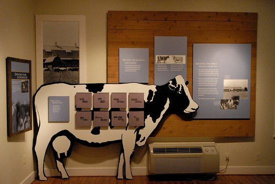 An exhibit about dairy and the Floris area is in the Visitor Center at 2739 West Ox Rd, Herndon.