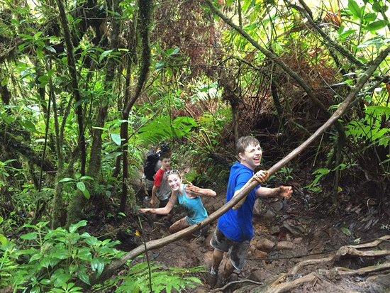Nevis Peak Hike: photo2.jpg
