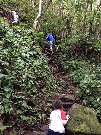Nevis Peak Hike: photo3.jpg