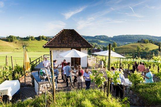 Winery Schwarz