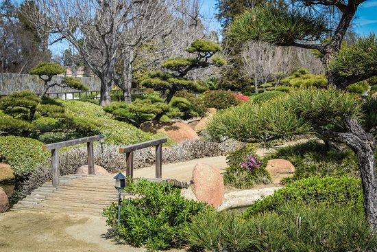 Japanese Garden Bild Von The Japanese Garden Los Angeles Tripadvisor