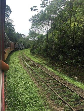 Special Paraná: photo0.jpg