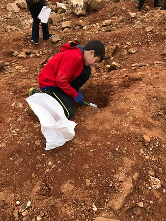 Jessieville, AR: We had fun digging for quartz, crystals, and cool rocks. We found lots of treasures, and enjoyed