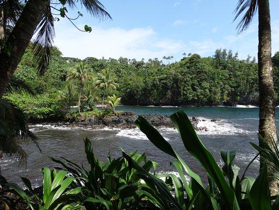 Papaikou, ฮาวาย: Ocean view