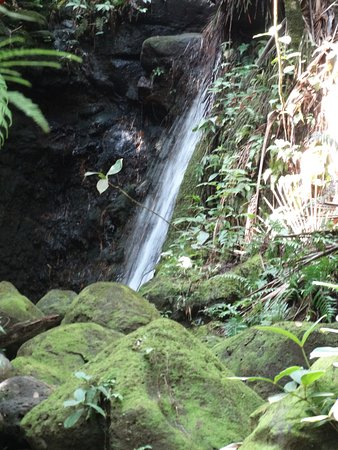 Papaikou, HI: Waterfall
