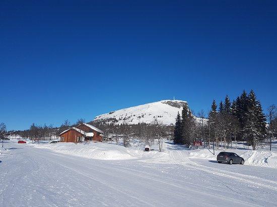 Svingvoll, Norwegia: 20170307_105834_large.jpg