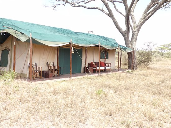 Lemala Mara Ndutu Tented Camp: Outdoor view of our private tent