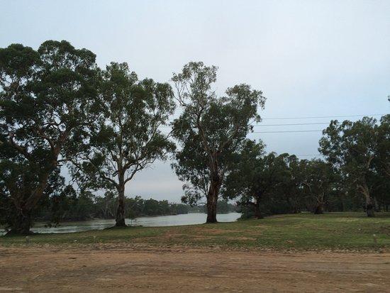 Loxton, Australie : photo2.jpg