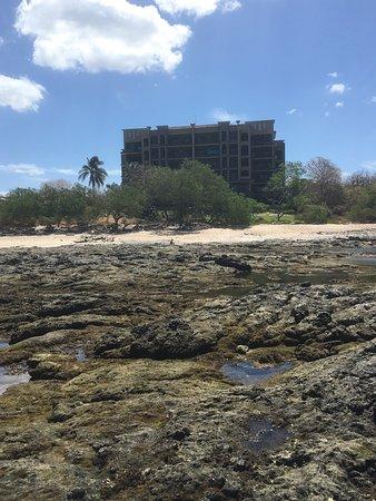 Crystal Sands Tamarindo Condo Villas: photo1.jpg