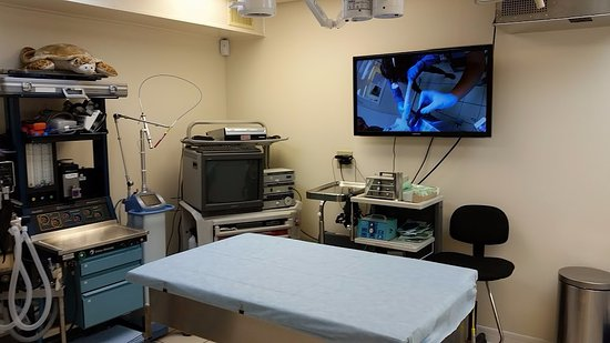 Marathon Shores, FL: operating room