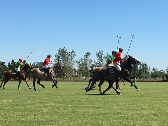 Argentina Polo Day: photo2.jpg