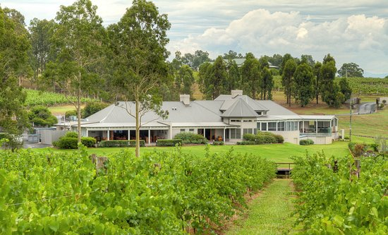 RidgeView Restaurant,Wines & Cottages: RidgeView from the Pinot Gris vineyard.