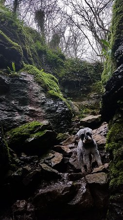 Ebbor Gorge : Rocky paths which we found fun to clamber
