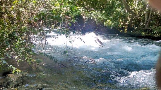 Recanto Ecológico Rio da Prata: Apesar da imagem mostrar força a correnteza é leve o tempo inteiro