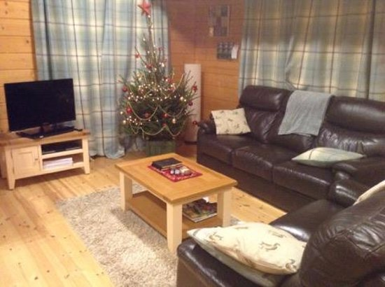 Badwell Ash, UK: Such a warm and comfortable living room - with my first ever REAL Christmas tree... HEAVEN!!